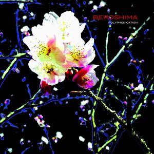 beroshima - polyphonication