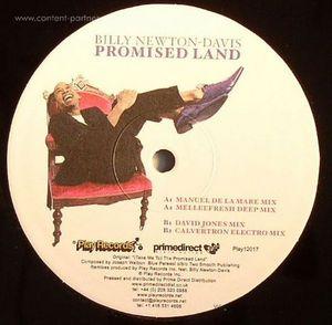 billy newton-davis - promised land