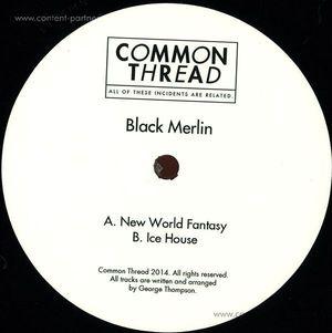 black merlin VINYL ONLY - new world fantasy / ice house