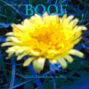 boof - shhh,dandelions at play