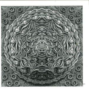 deer - string theory (dwig remix)