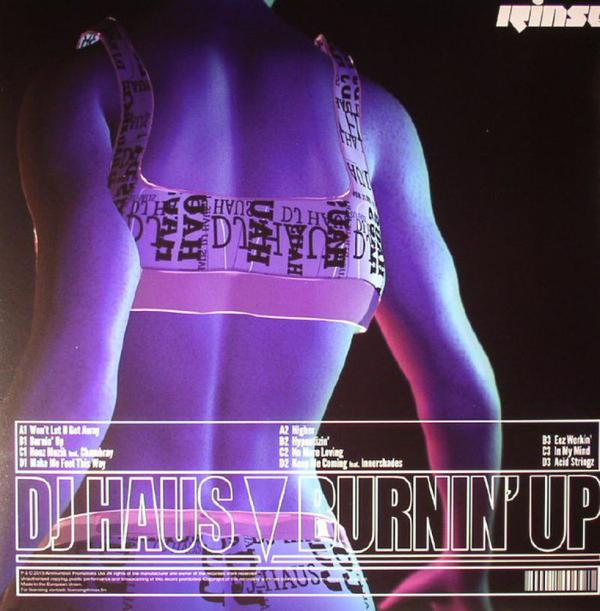 dj haus - burnin up (Back)