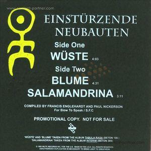 einstuerzende neubauten - wuste/blume/salandrina