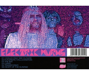 electric w�rms - musik,die schwer zu twerk (Back)