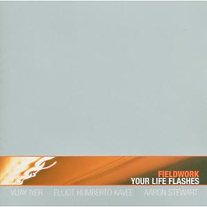 fieldwork - your life flashes