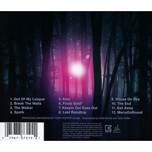 fitz & the tantrums - more than just a dream (Back)
