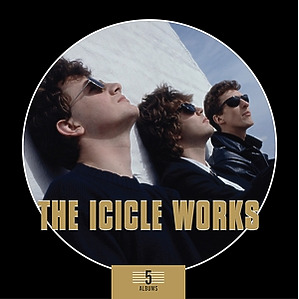 icicle works,the - 5 albums box set