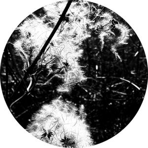 joachim spieth - irradiance reworked