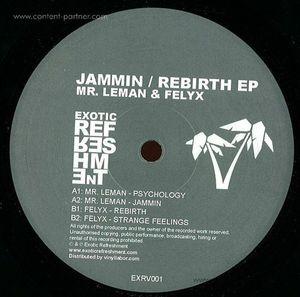 mr. leman & felyx - jammin / rebirth ep