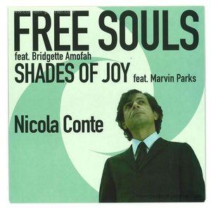 nicola conte - free souls / shades of joy (7