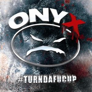 onyx - turndafucup