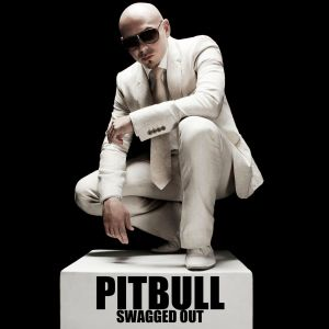 pitbull - swagged out