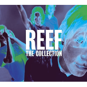 reef - collection