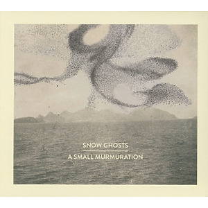 snow ghosts - a small murmuration