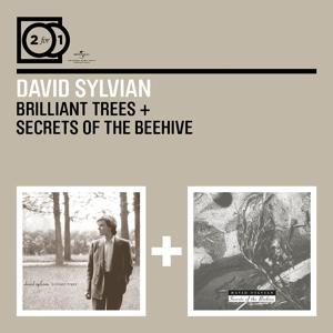 sylvian,david - 2 for 1: brilliant trees/secrets of the