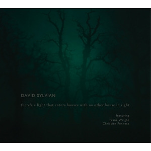 sylvian,david - there's a light that enters houses with