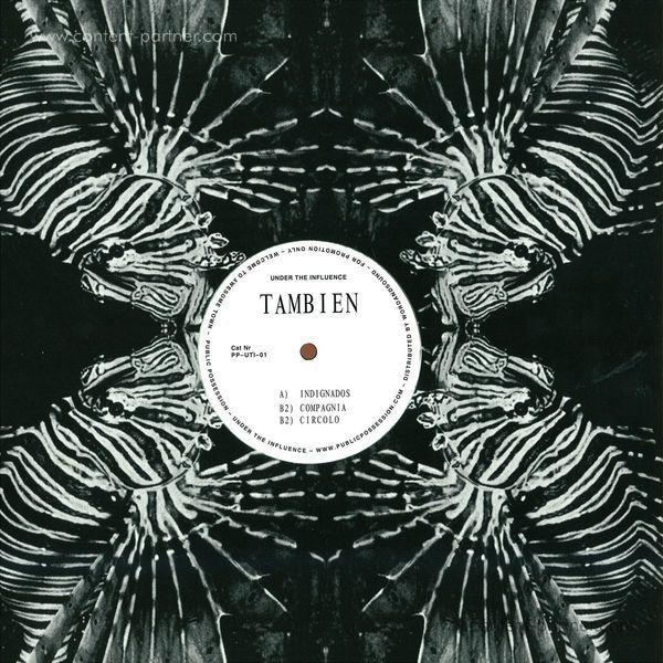 tambien - the tambien project (repress)