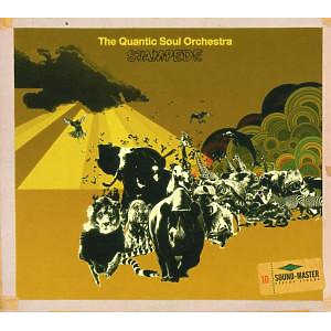 the quantic soul orchestra - stampede cd