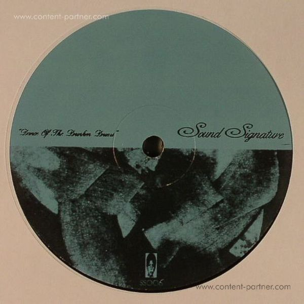 theo parrish - appetite for the abstract