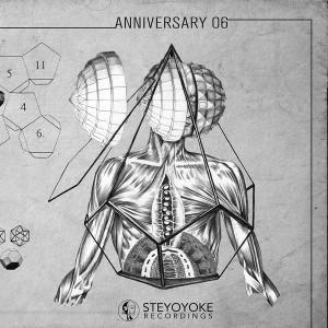 v.a. - steyoyoke anniversary 06