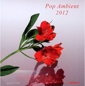 various - pop ambient 2012