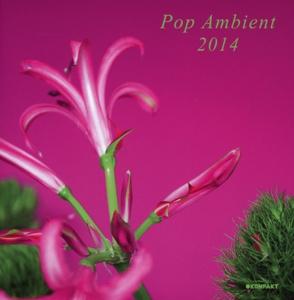 various - pop ambient 2014