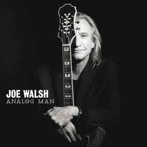 walsh,joe - analog man