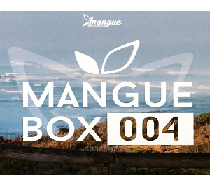 various artists - mangue box 004