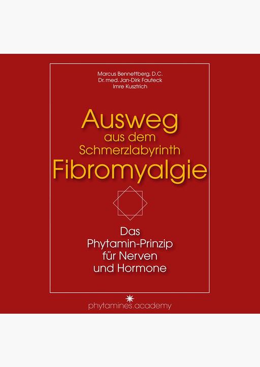 Bennettberg Marcus, Fauteck Jan-Dirk, Kusztrich Im - Ausweg aus dem Schmerzlabyrinth Fibromyalgie