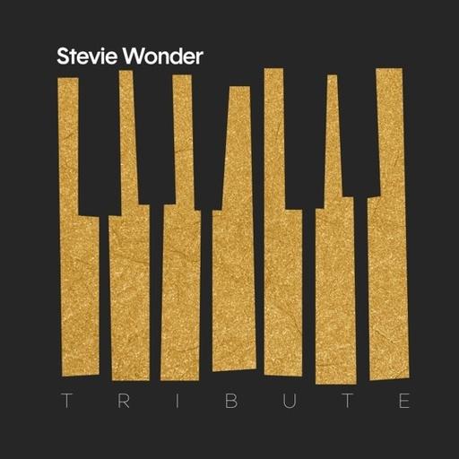Various Artists - Stevie Wonder Tribute