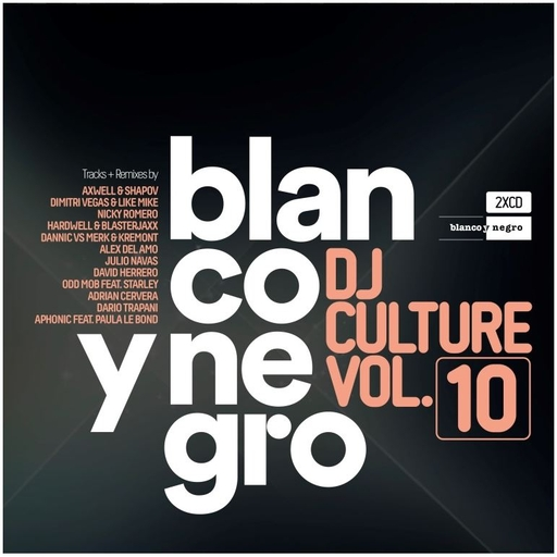 Various Artists - Blanco Y Negro DJ Culture Vol.10