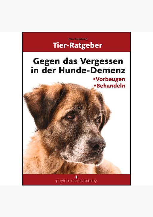 Imre Kusztrich - Gegen das Vergessen in der Hunde-Demenz
