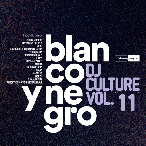 Various Artists - Blanco Y Negro DJ Culture Vol.11