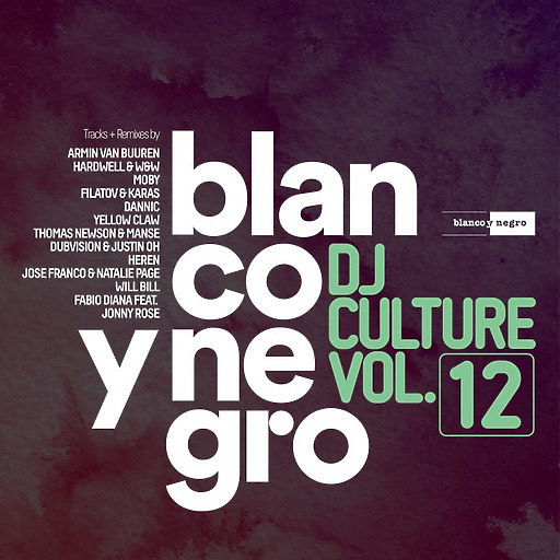 Various Artists - Various Artists - Blanco Y Negro DJ Culture Vol.12