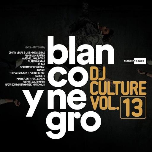 Various Artists - Blanco Y Negro DJ Culture Vol.13