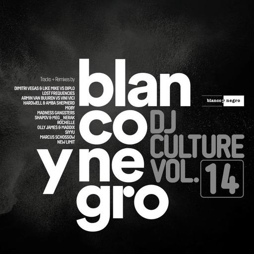 Various Artists - Various Artists - Blanco Y Negro DJ Culture Vol.14