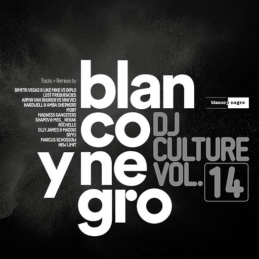 Various Artists - Blanco Y Negro DJ Culture Vol.14