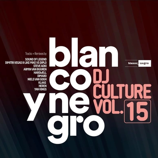 Various Artists - Blanco Y Negro DJ Culture Vol.15