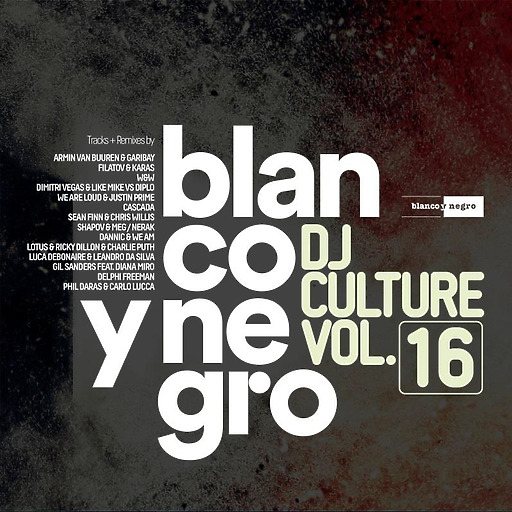 Various Artists - Various Artists - Blanco Y Negro DJ Culture Vol.16