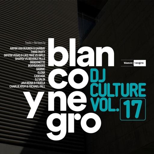 Various Artists - Various Artists - Blanco Y Negro DJ Culture Vol.17