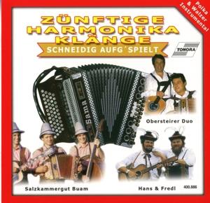 Various Artists - Various Artists - Zünftige Harmonika Klänge