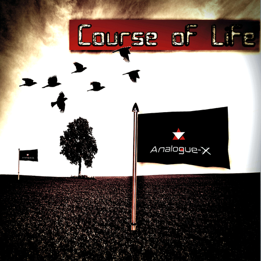 Analogue-X - Course of Life