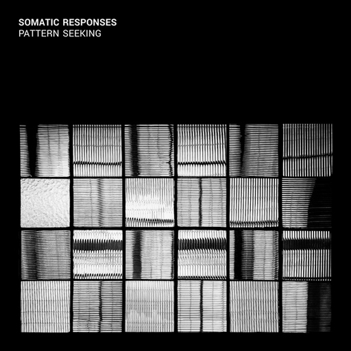 Somatic Responses - Pattern seeking