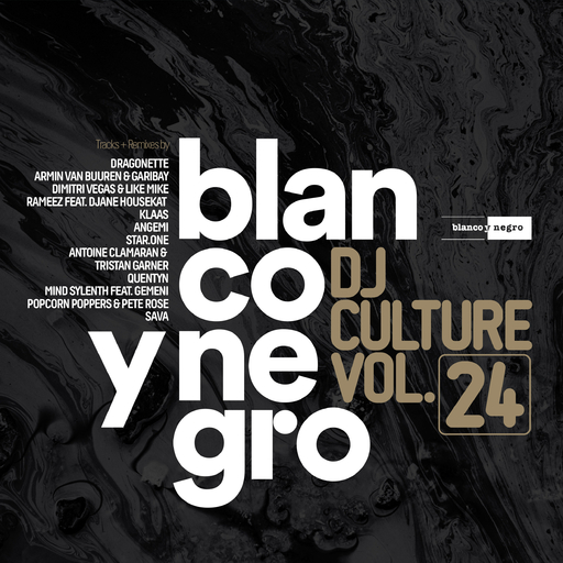 Various Artists - Blanco Y Negro DJ Culture Vol.24
