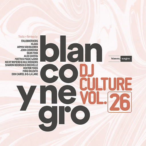 Various Artists - Blanco Y Negro DJ Culture Vol.26