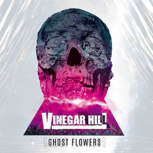 Vinegar Hill - Vinegar Hill - Ghost Flowers