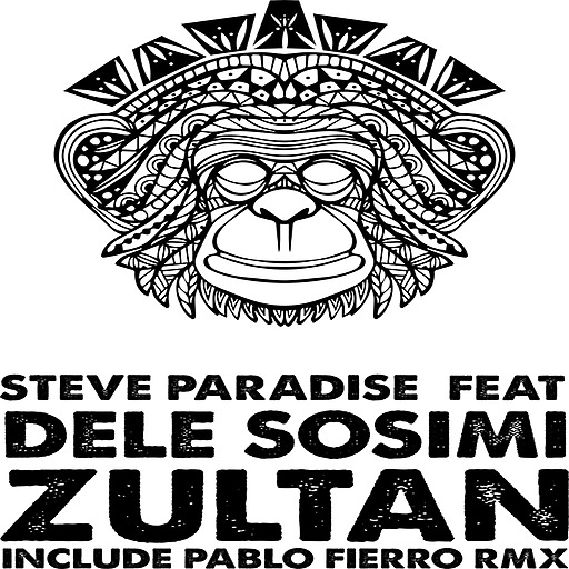 Steve Paradise feat. Dele Sosimi - Steve Paradise feat. Dele Sosimi - Zultan