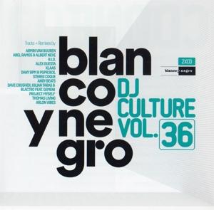 Various Artists - Various Artists - Blanco Y Negro DJ Culture Vol. 36
