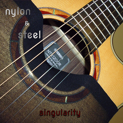Nylon & Steel - Singularity