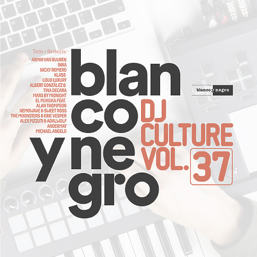Various Artists - Blanco Y Negro DJ Culture Vol. 37